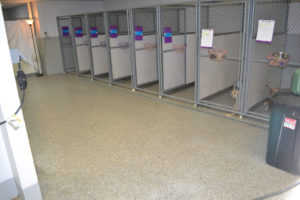 epoxy flake flooring for dog kennels in vet clinic